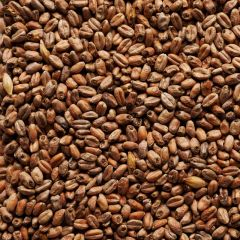 Joe White Roasted Wheat Malt - per kilo